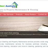 Cleaning Contractors Website